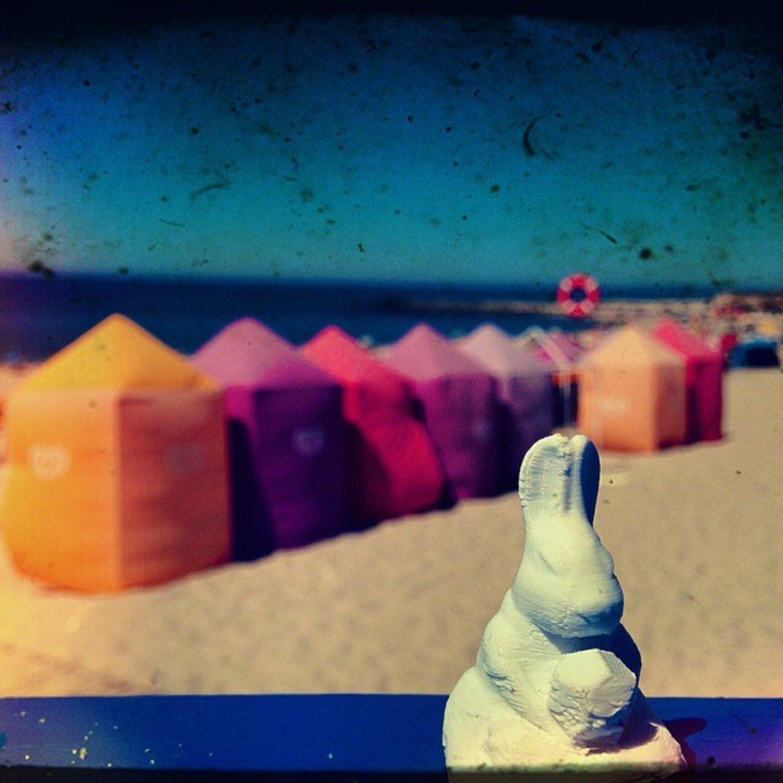 Ronald's photo / Praia da Vieira / Portugal